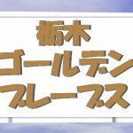 栃木ゴールデンブレーブスが始動!ルートインBCリーグに参入するチームです。